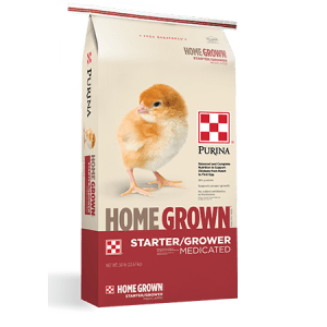 Home Grown Starter/Grower Medicated Feed