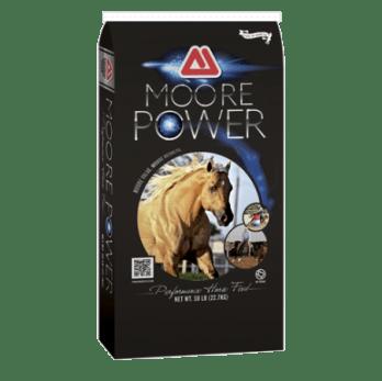 Thomas Moore Power 14% Sweet Horse Feed