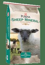 PURINA SHEEP MINERAL WITH CLARIFY at Pasturas Los Alazanes in Dallas, Texas.