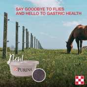 Purina EquiTub with ClariFly. Brown horse in green field. For equine gastric support and fly control.