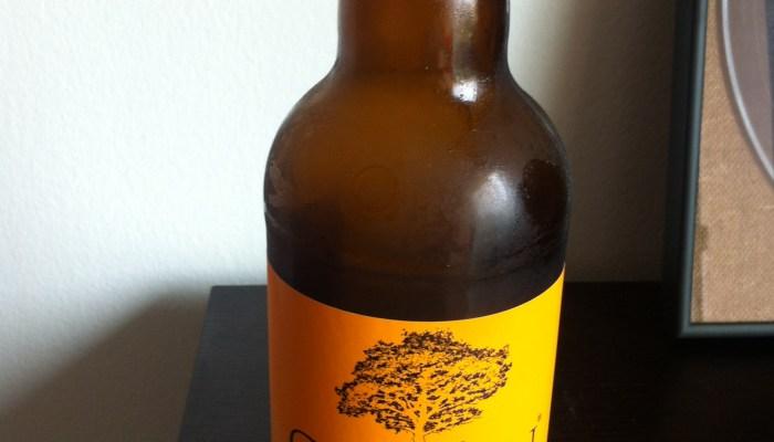 Hard Cider Braised 'Beer' Bratwurst