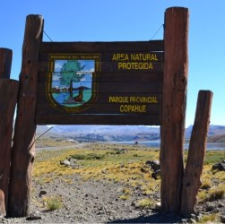 Área Natural Protegida Copahue