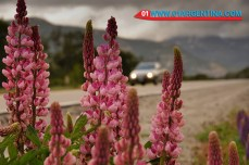 colors-patagonia04