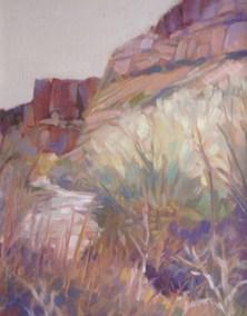 Canyon-de-Chelly-Spring-2JPG