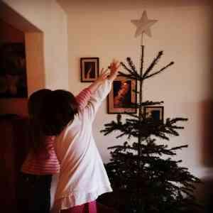 Neujahr WiB Tannenbaum