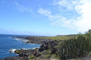 Panoramica de Playas Las Arenas