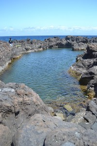 Charco Roque