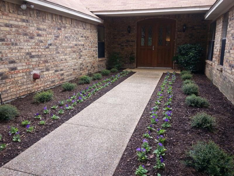 front walk with flowers