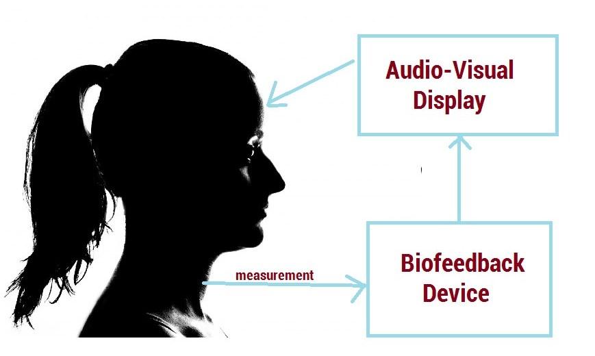biofeedback loop