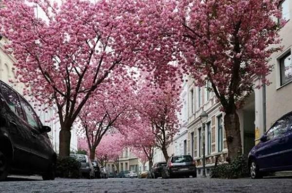 Professionelle Filmproduktionen aus Bonn und Umgebung in einer Liste