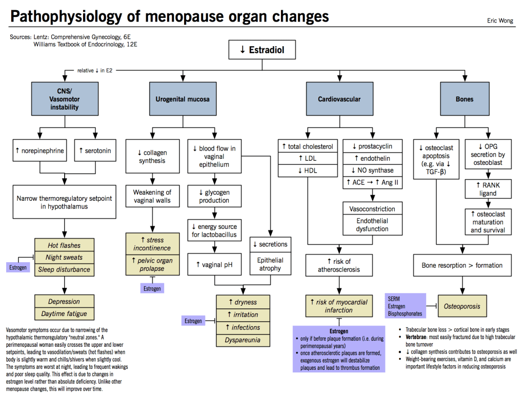Pathophysiology Of Menopause Organ Changes