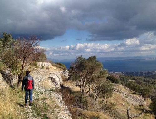 Tourism and biodiversity in Chios