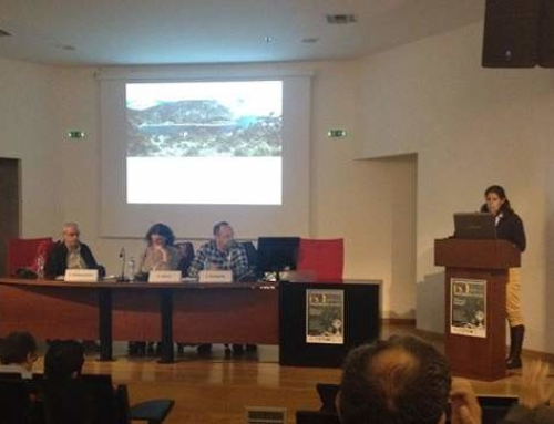 Presentation at the 8th Panhellenic Ecology Conference