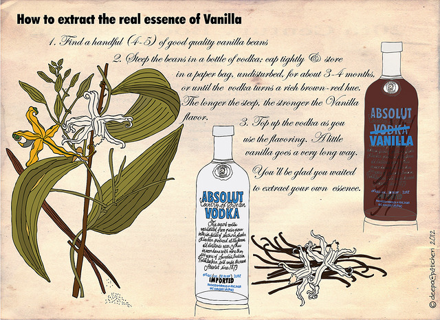 How to extract the essence of vanilla