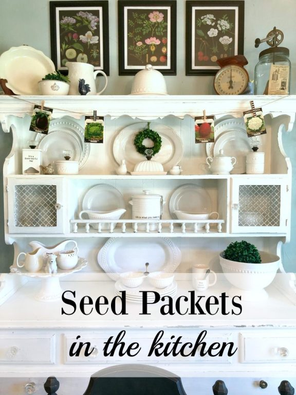 Seed Packets in the kitchen