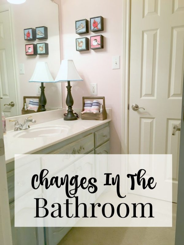 changes in the bathroom 11