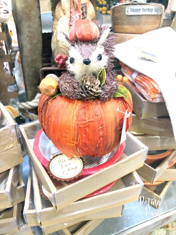 squirrel in a pumpkin
