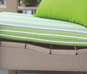 Patiova Sunbrella seat cushions.