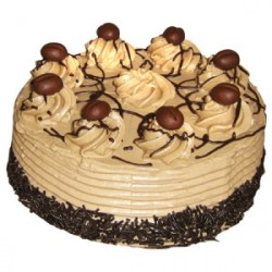 Cake Homes Delivery Patna