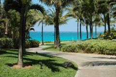 Path to the beach at the Ocean Club