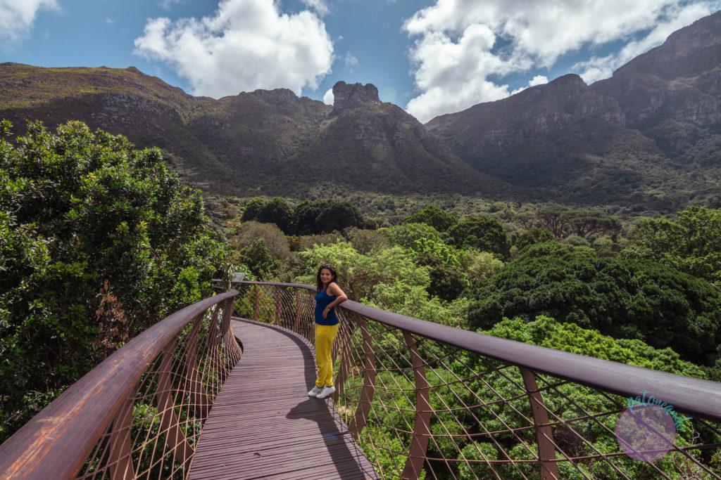 Que ver en ciudad del cabo - guia - Kirstenbosch garden - Patoneando blog de viajes (15)