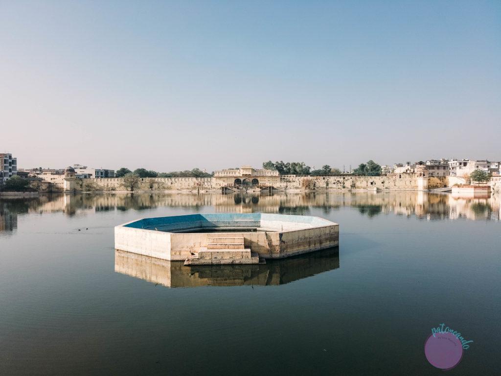 20 cosas que hacer en Jaipur - India - lago talkatora - taPatoneando blog de viajes
