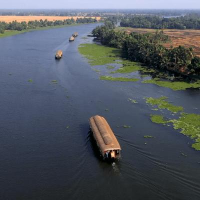 Navegar los backwaters de Kerala: todo lo que debes saber