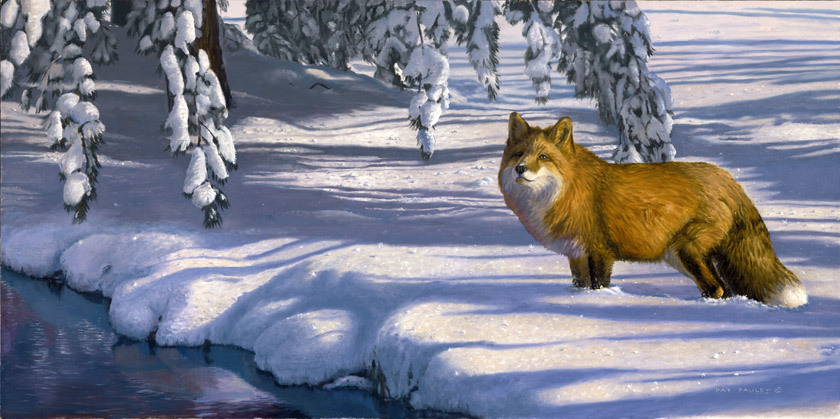 Winter Blues Red Fox Painting By Artist Pat Pauley