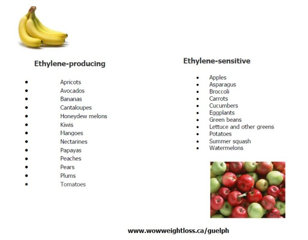 Ethylene and non ethylene foods