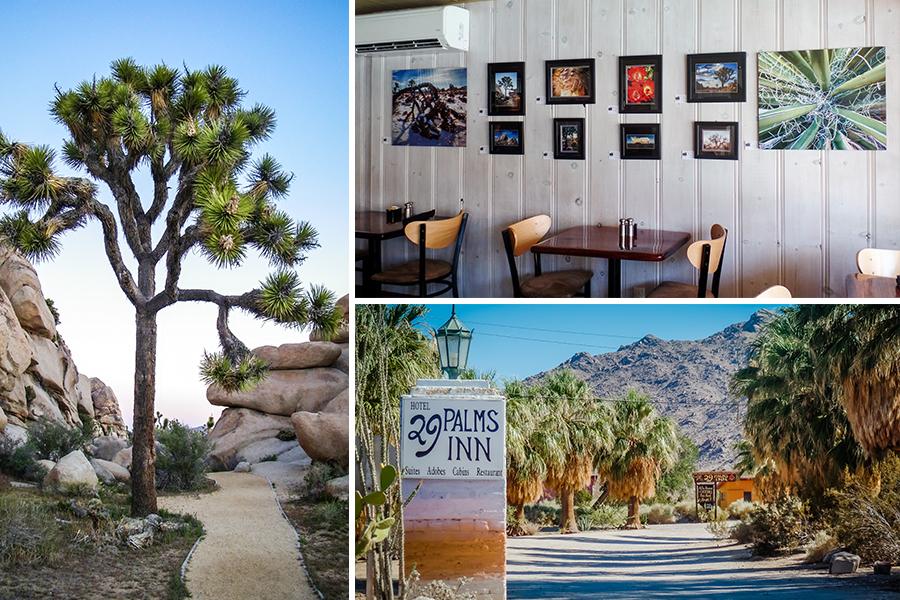 Storyboard - Now Showing 29 Palms Inn Restaurant