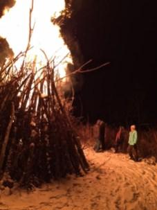 bonfire scale 2017