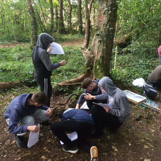 2nd year Ecology field trip in Lullymore 7th October 2016