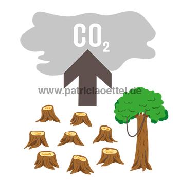 Grafik 6 Klimabelastung Palmöl