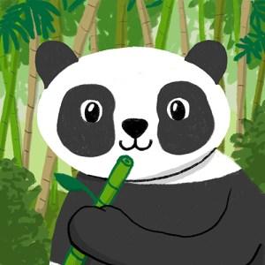 Memo Panda