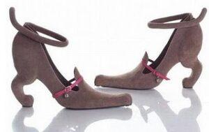 Cachorro1 300x189 - Sapatos Estranhos