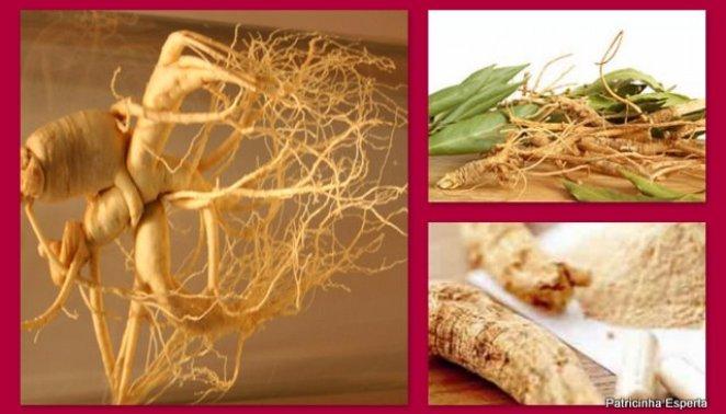 2011 10 011 - Ginseng Indiano: Combate o Estresse, a Insônia e É Antioxidante e Rejuvenescedor!