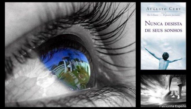 2011 10 091 - Nunca Desista Dos Seus Sonhos - Livro