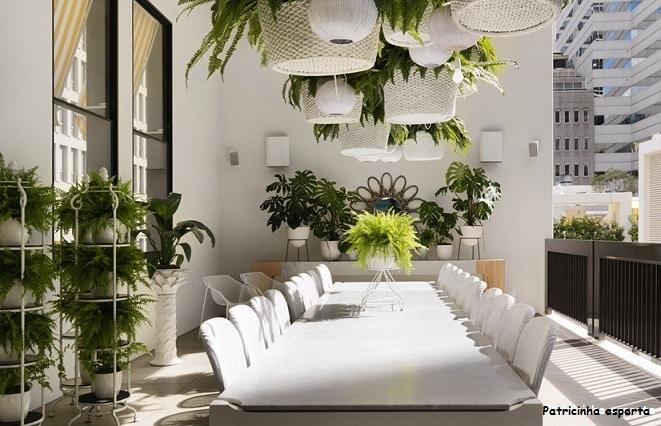 top5 samambaias referans03 - Fibra na decoração...