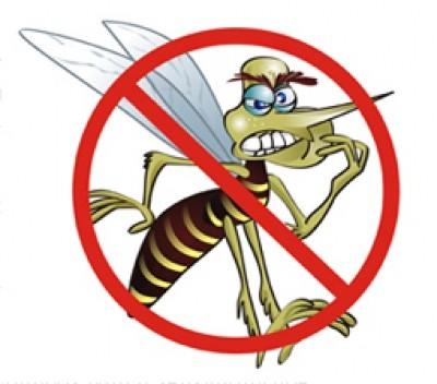 dengue - Cuidado com a dengue