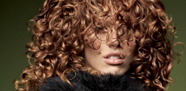 deva curl Cachos - Receitas Caseiras Para Cabelos Cacheados: Higienização, Livro Curly Girl