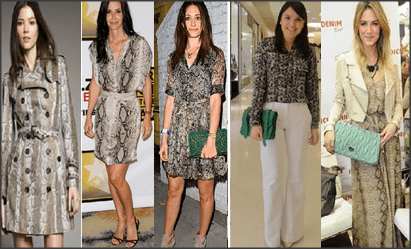 Snap 2012 11 27 at 18.36.55 - Tendência 2013 – moda Animal Print!
