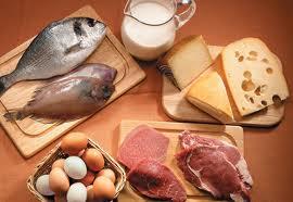 proteina - Saiba qual a importância da proteína na sua alimentação