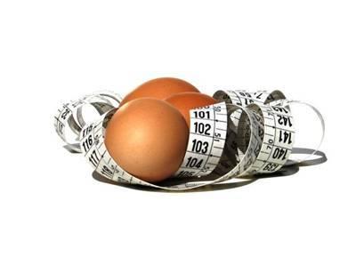 ovo - Os Perigos da Dieta da USP