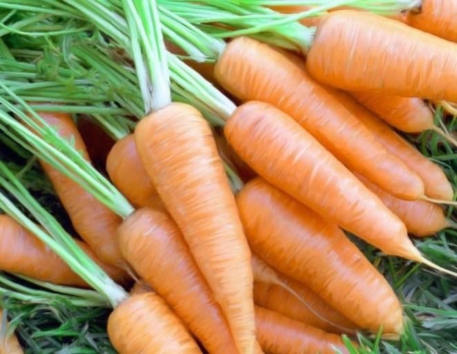 alimentos cenoura - Quais alimentos melhoram a beleza da pele?