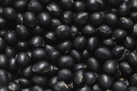 content 1587 - Aposte nos alimentos de cor escura!