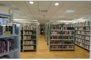 Bibliothèque Mende Rayon livre