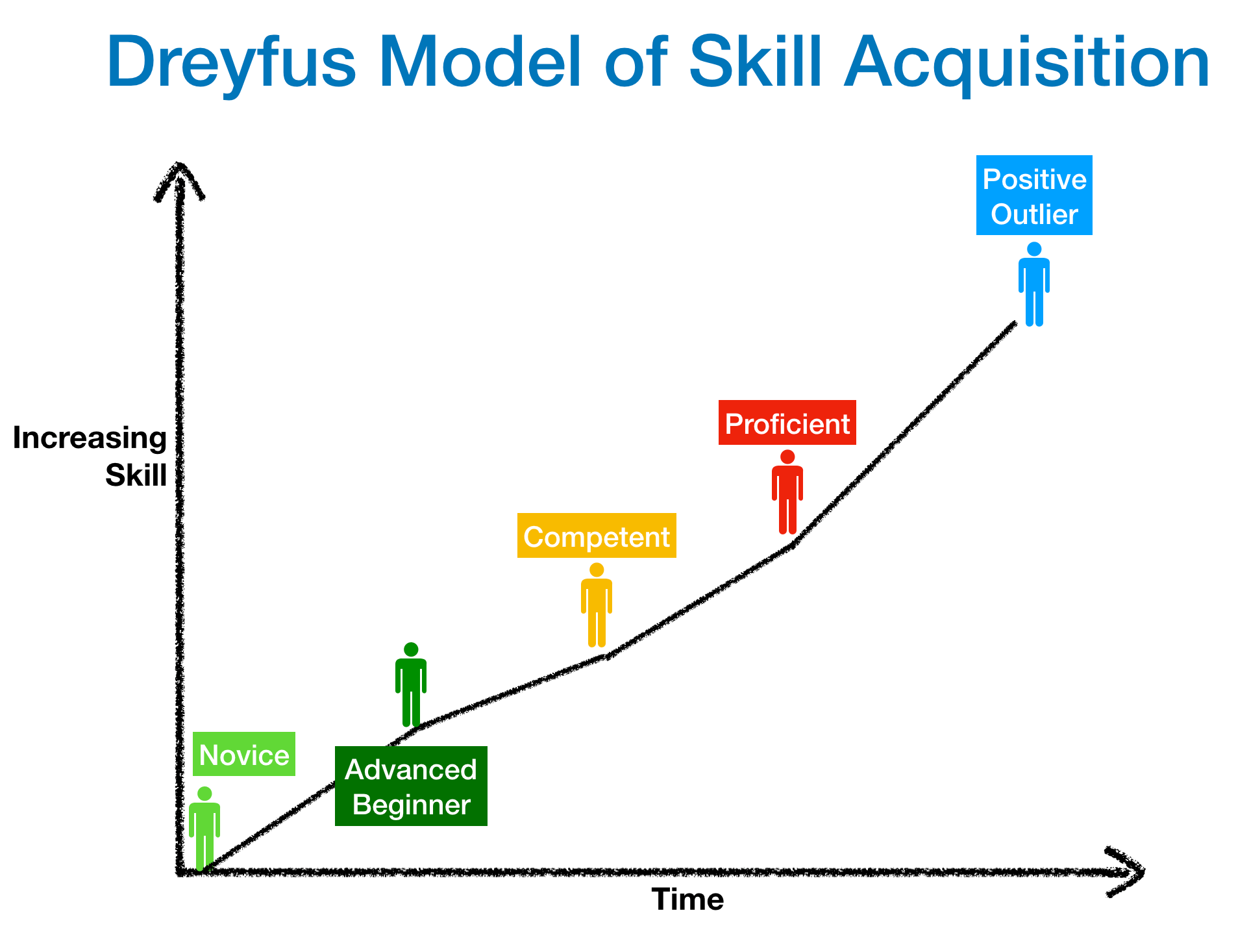 Variant of Dreyfus Model of Skill Acquisition