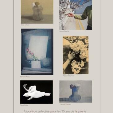 Prochaine exposition : Exposition collective à la galerie Camera Obscura «Flores»