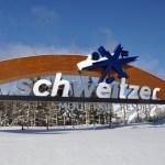 Best Real Estate Deals at Schweitzer Mountain