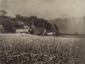 The Onion Field, George davison (England 1854-1890) 1890, fotogravyr från 1907